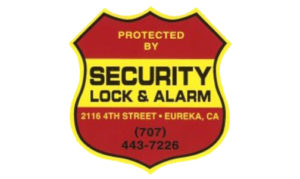 Security Lock And Alarm